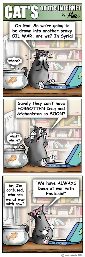 Cats00059Syria