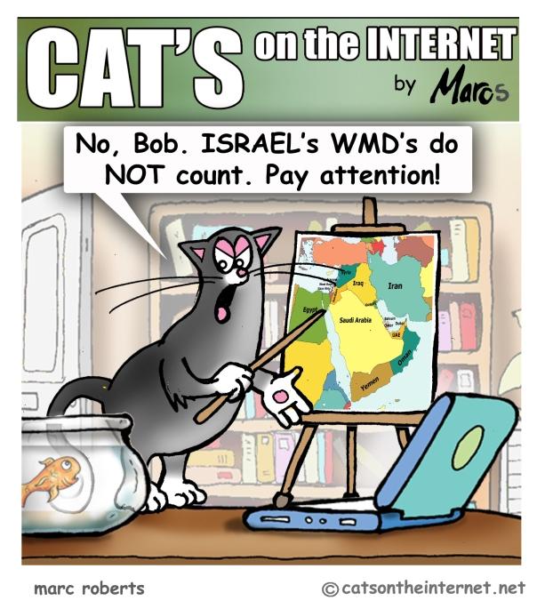 Cats00122Syria