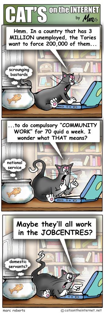Cats00128Osborne
